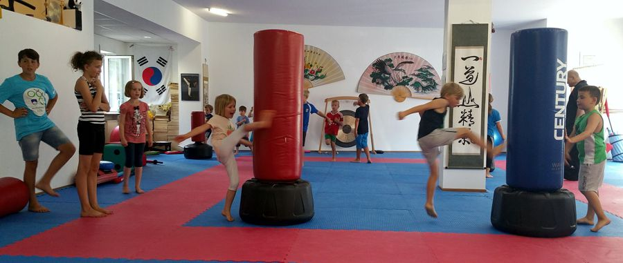 Hapkido Ferienpass 2016 - Kinder kicken